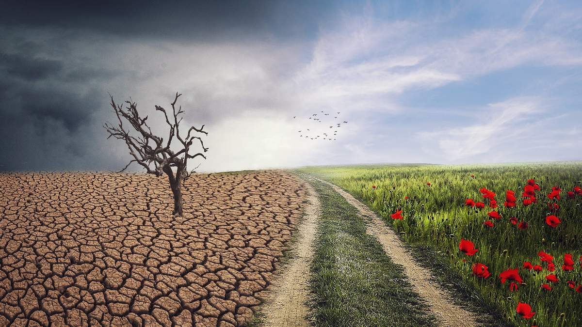 """""""ЕкоСистема"""": як працюватиме єдиний в Україні екологічний веб-портал - Тренди"""