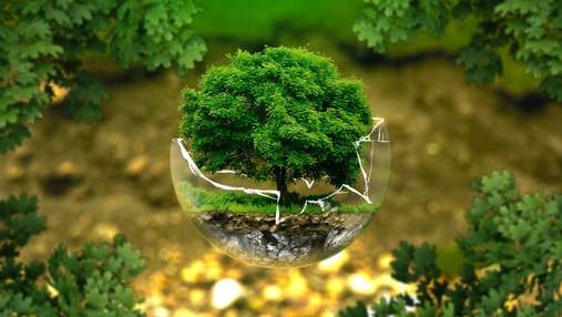 Стартував Lviv Eco Forum 2021: чому це важливо